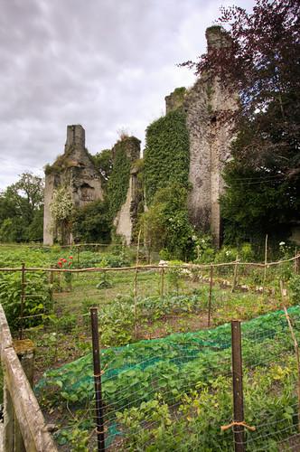 Calverstown Castle garden