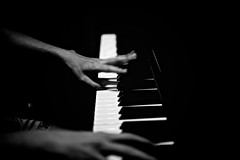 musician, pianist, piano, musical keyboard, keyboard, jazz pianist, monochrome photography, monochrome, black-and-white,
