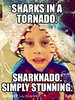 ##Sharknado2TheSecondOne #gosharkyourself