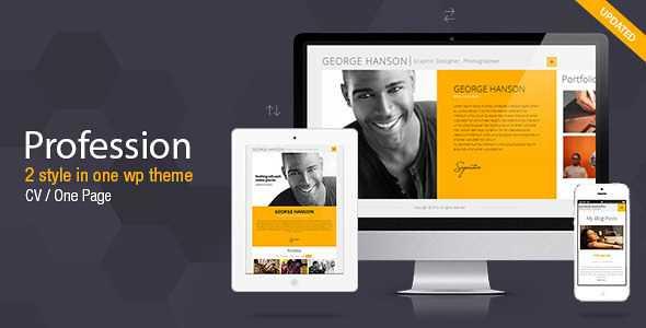 Profession WordPress Theme free download