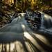 Dault's Falls by Marty Hogan
