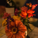 Flowers+by+Candlelight