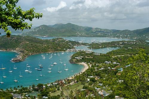 antigua antiguaandbarbuda caribbean englishharbour leewardislands lesserantilles saintpaul shirleyheights westindies byrobin