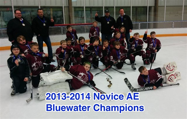 Novice AE Cobras