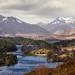 Small photo of Glen Affric, Scotland