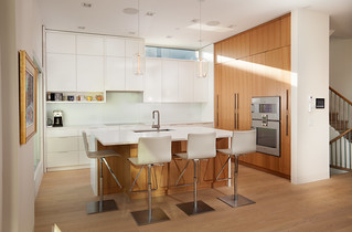 Stine House - Kitchen Perspective
