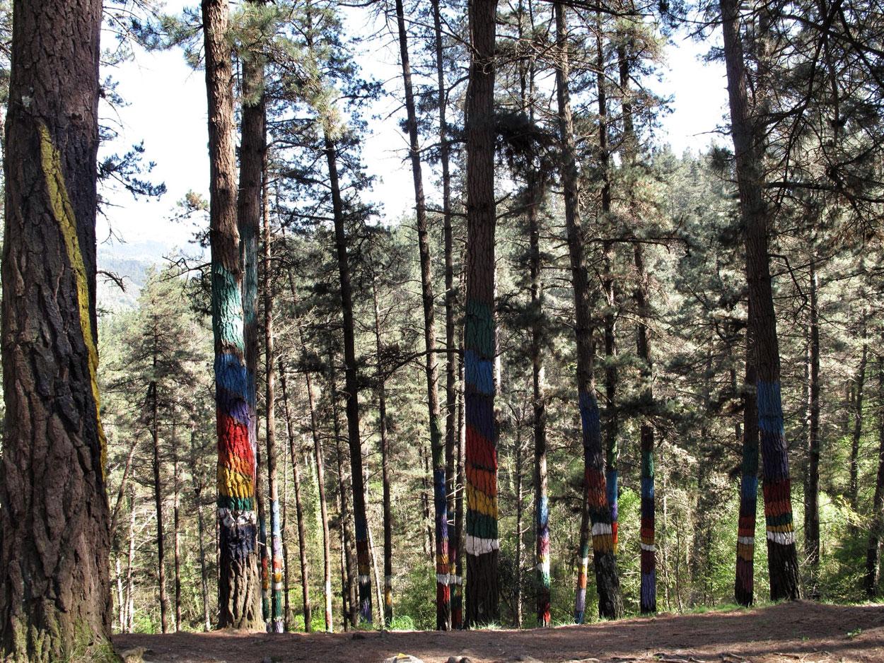 bosque de oma_arco iris_1983_agustin ibarrola