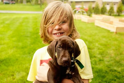 boysanddog1-0514