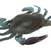 TPE Crab