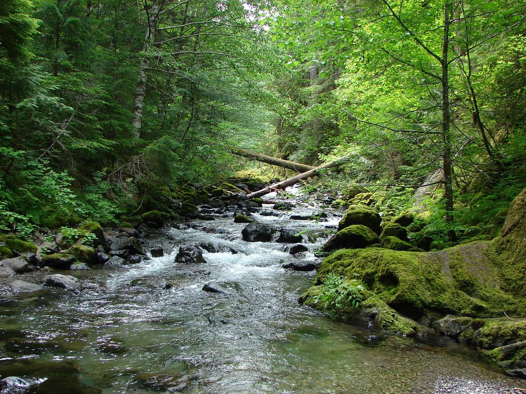 Battle Ax Creek