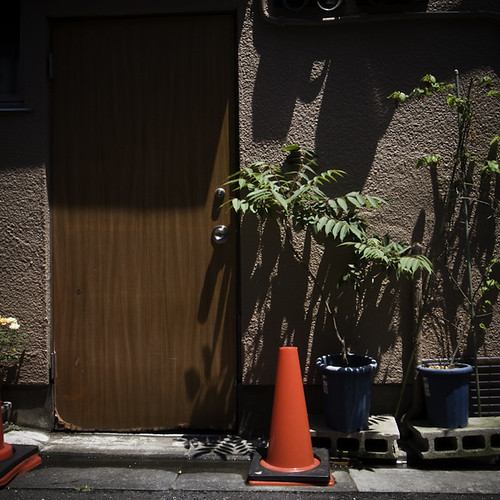 One Door, One Cone Three Plants, Sunamachi Ginza