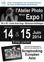 Expo Juin 2014 - Photo of Saint-Méen-le-Grand