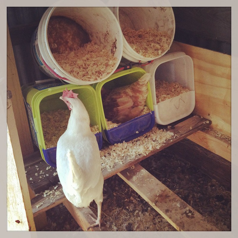 Upcycled Nesting Boxes