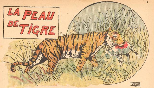la peau du tigre
