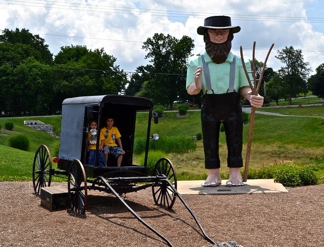 Amish man and buggy - Amish Tour - Lancaster County PA