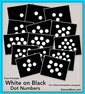 Free White on Black Dot Numbers (infant stimulation program)