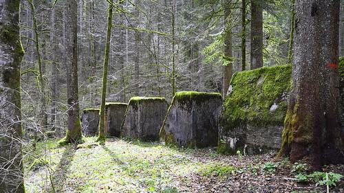 geotagged schweiz switzerland nikon suisse hiking natur che wandern cantondeneuchâtel pouettaraisse nikonschweiz d5300 capturenx2 ponte1112 môtiersne nikkor18200vrll viewnx2 geo:lat=4690123000 geo:lon=661474667