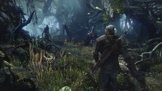 Witcher_3_E3_Screenshots_2