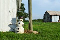 Austin County Farmhouse, Snowman s1406190804