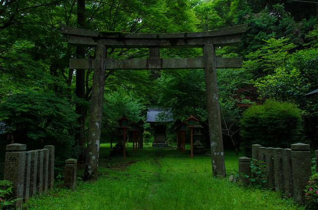 Saito, Hieizan, Enryaku-ji Temple, Kyoto, Shiga / 西塔 比叡山・延暦寺(京都・滋賀)