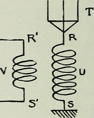 "Image from page 7 of ""Proceedings"" (1913)"