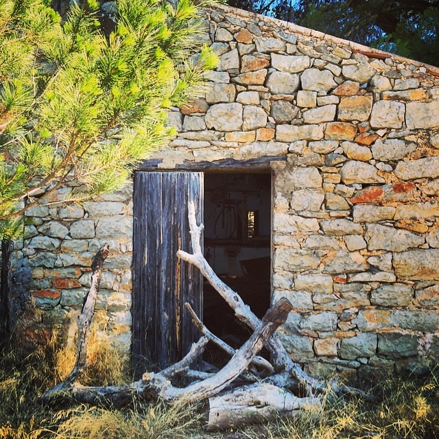 An old shed filled with old farm equipment?