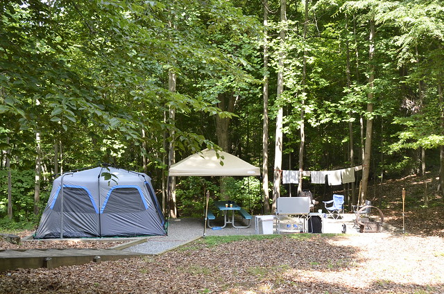 Camping at Virginia State Parks