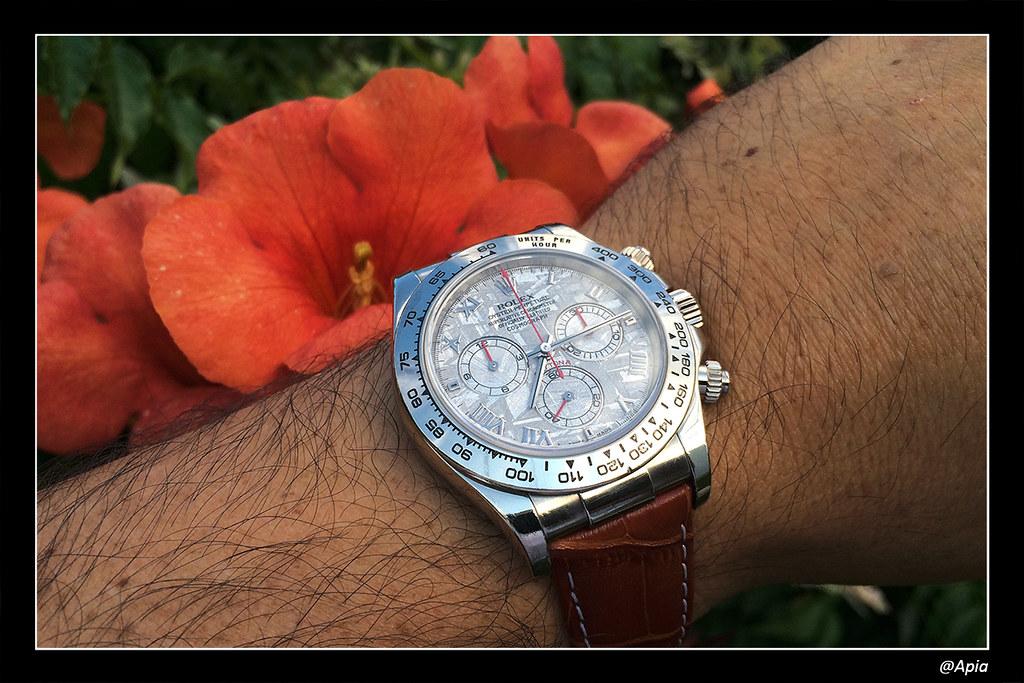 Votre montre du jour - Page 19 14668232184_32537f646a_b
