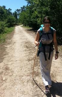 Camino de santiago3