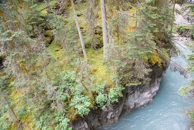 Johnston Canyon Banff NationalPark
