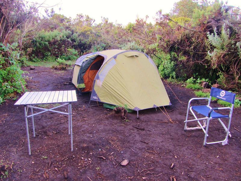 Climb Mt Kilimanjaro via Rongai Route