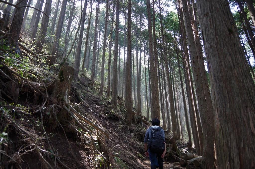 20140504_Mt.Hakone-komagatake 020