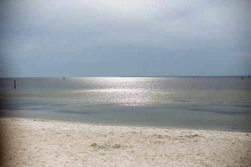 03-14 Florida-1392-Edit-2