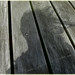breezy end of the pier shadow selfie  126/365 by dawn.v