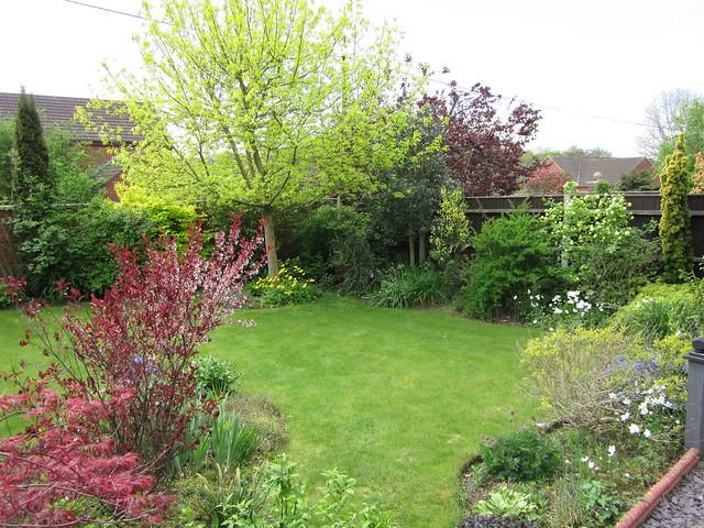 April 27 2014 garden (20)