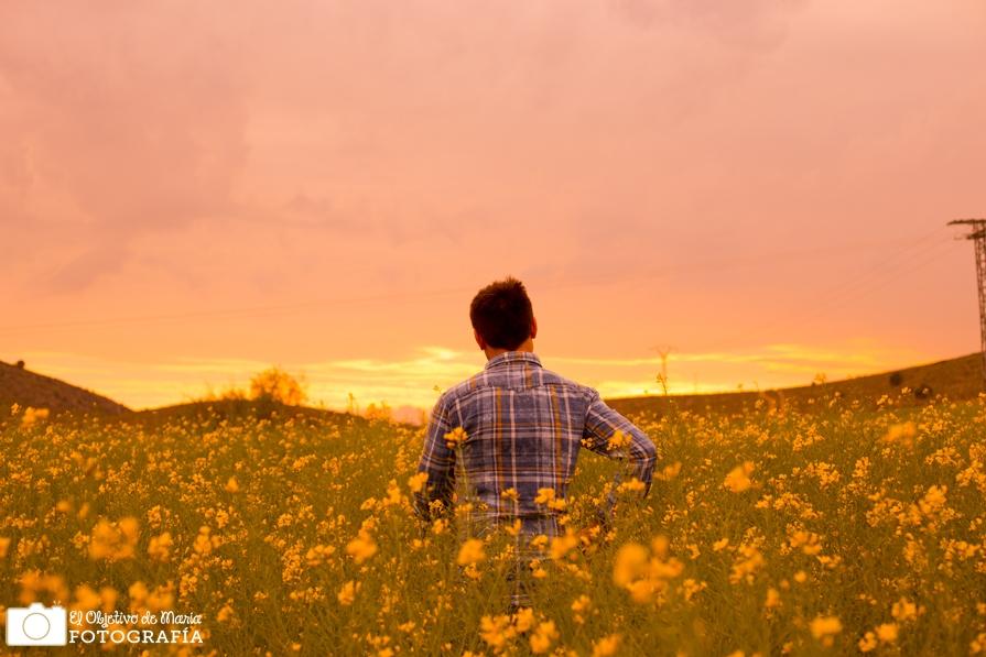 Yellow Carlos