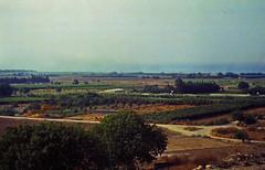 100Zypern Acheleia