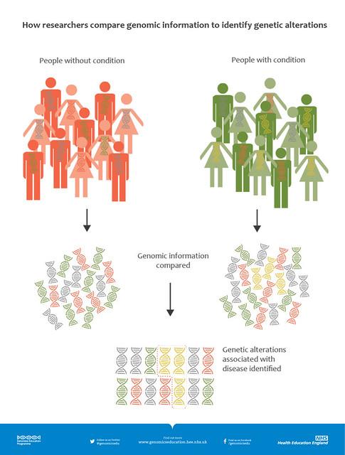 GWAS infographic