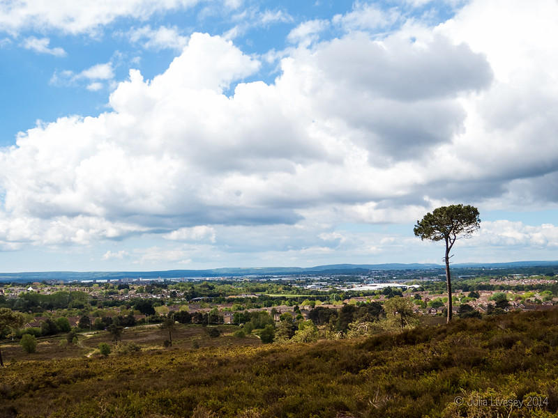 View over Poole from Canford Heath