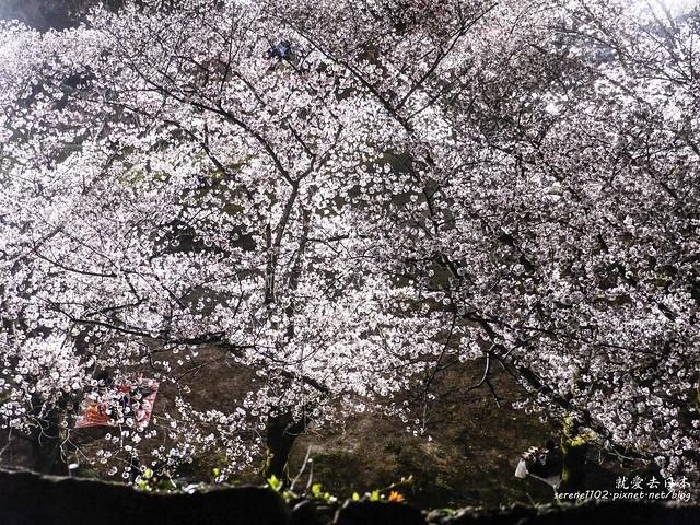 20140327山陽D2熊本-1130314