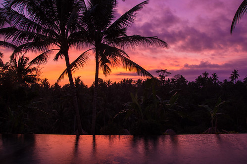bali indonesia swimmingpool indonesie ubud hôtelpertiwibisma1