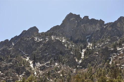 Upper Reaches above Pine Tree Trail