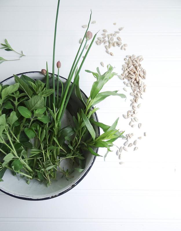 sunflower seed herb pesto