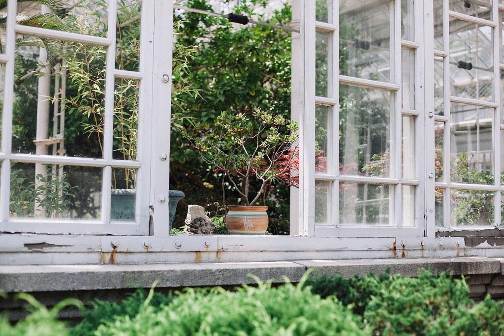 Seoul Greenhouse 009