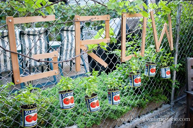 Grow Basil Chain Link Garden | www.brooklynlimestone.com