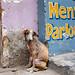 Men's Parlour - Varanasi, India