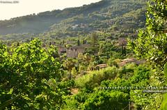 El Valle de Sóller desde Biniaraix