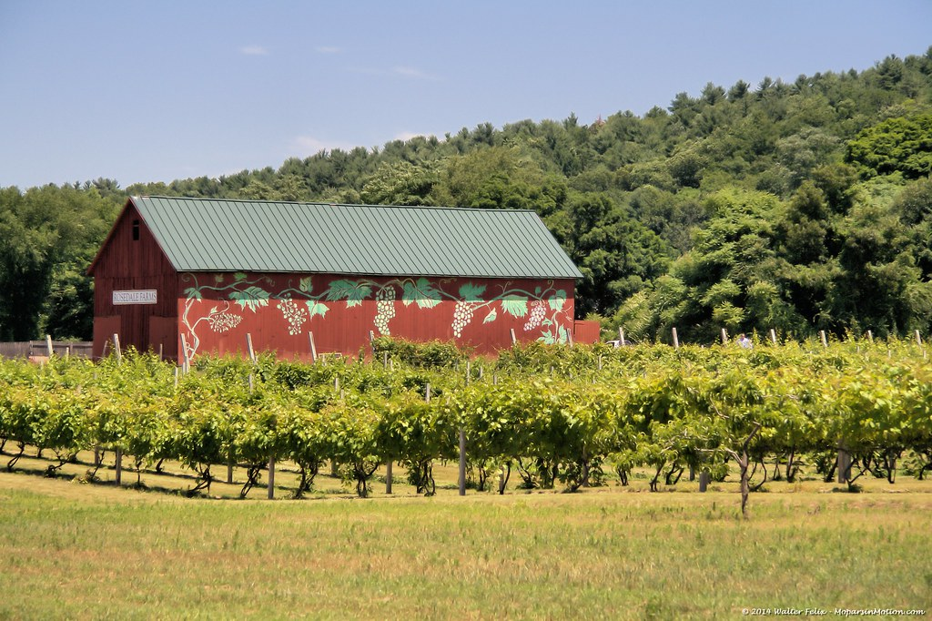 Rosedale Farms & Vineyards