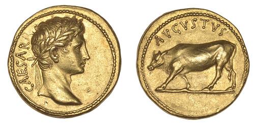 DNW Augustus aureus