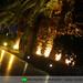 palmen_Hotel_Aphrodite